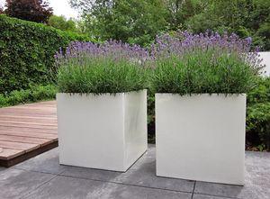 SO GARDEN - buxus - Blumenkübel
