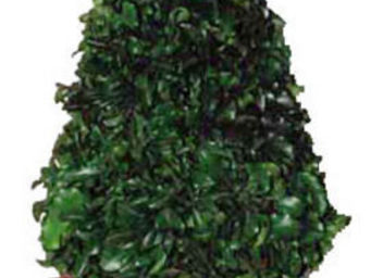 Hortus Verde - cône végétal - Topiari Für Den Innenbereich