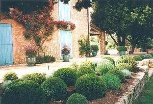 Claire Pernod Fantini - un thème provençal - Landschaftsgarten