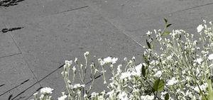 Basaltina - basaltina - Bodenplatten Außenbereich
