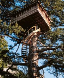 La Cabane Perchee - suspendue - Baumhaus