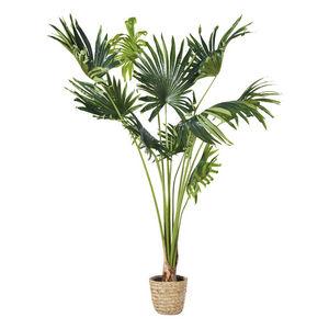 MAISONS DU MONDE -  - Künstlicher Baum