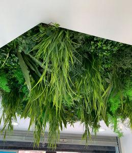Vegetal  Indoor - plafond végétal artificiel - Bepflanzte Wand