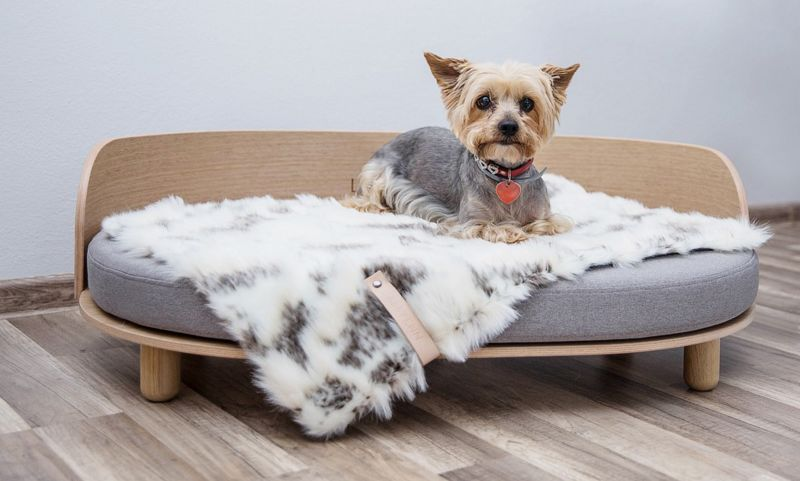 LABBVENN Cama para perro Artículos de decoración varios Mas allá de la decoración  |