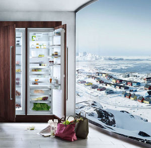 Siemens Refrigerador puerta de vidrio