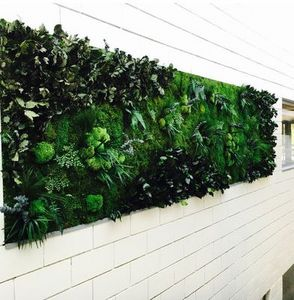 Vegetal  Indoor -  - Pared Vegetalizada