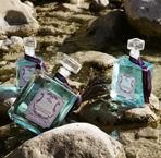 NICOLOSI CREATIONS -  - Agua De Colonia