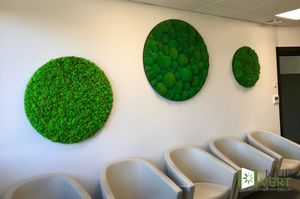 LE MUR VERT -  - Muro Vegetale