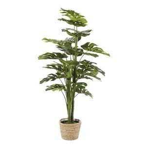 MAISONS DU MONDE - plante artificielle 1420083 - Pianta Artificiale