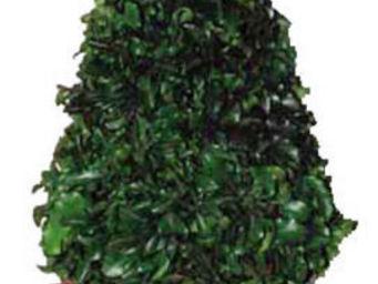Hortus Verde - cône végétal - Topiaria Per Interni